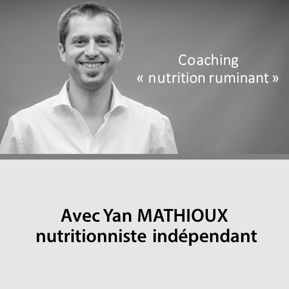 Illustration du coaching en nutrition de Yan MATHIOUX